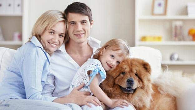 Wills & Trusts dog-young-family Direct Wills Teddington